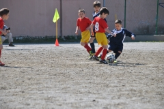 Foto Torneo 2014 - 2014_05_01 10_57_40