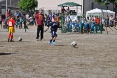 Foto Torneo 2014 - 2014_05_01 11_07_59_001