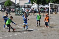 Foto Torneo 2014 - 2014_05_01 11_33_44